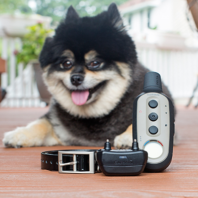 GARMIN<sup>®</sup> Delta<sup>®</sup> XC Remote Dog Training System - This remote training device offers three different training options in just one collar to best suit your dog and training goals.  Featuring adjustable settings for continuous or momentary stimulation, vibration or tone with an easy-to-read LCD handheld display.  Rugged and durable this trainer is effective up to 1/2 mile.  Includes black 3/4