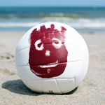 WILSON<sup>®</sup> Cast Away™ Volley Ball